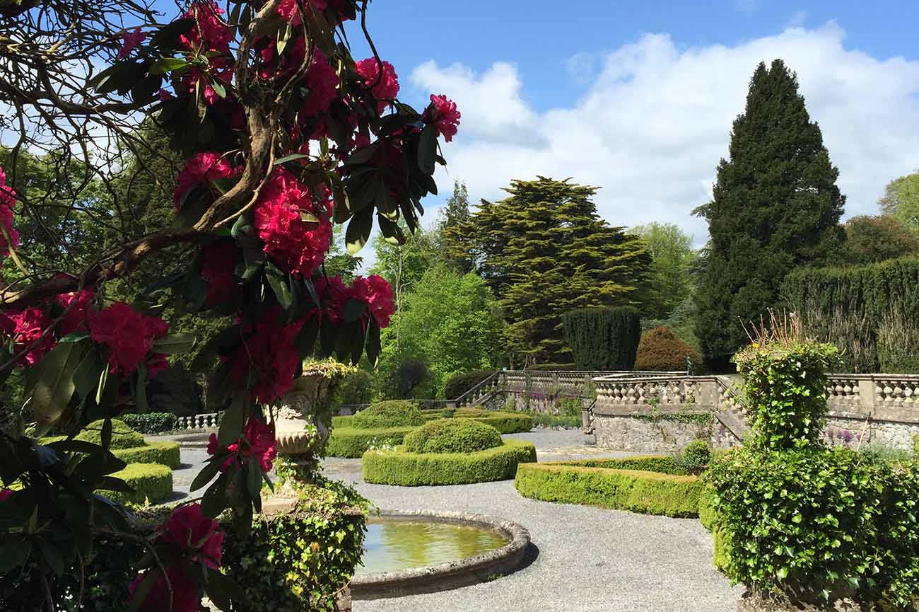 Gloster House & Gardens